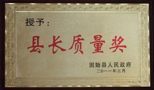 县长质量奖